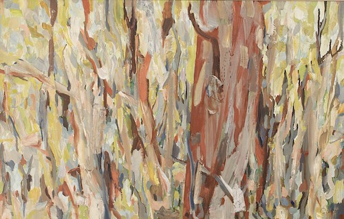 James Barker, Bush Abstract, 495x770cm, oil on canvas web image