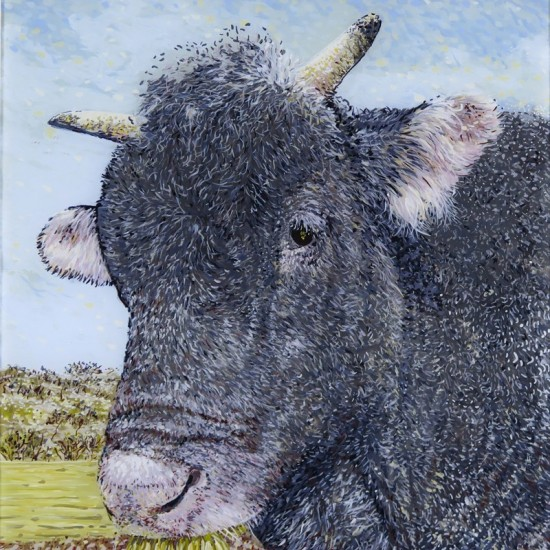 Astro Bull, Armidale