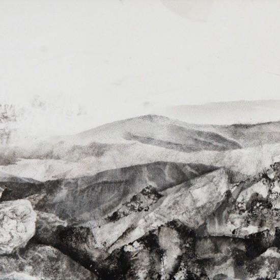 Recreated landscape