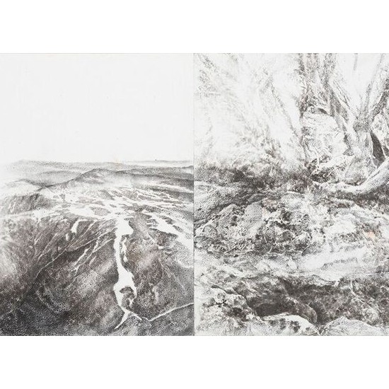 Before and After 2 (Diptych)