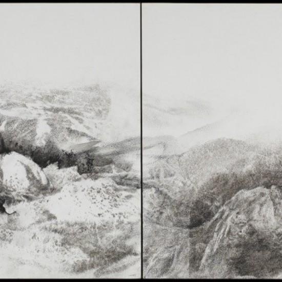 Assembled landscape 2