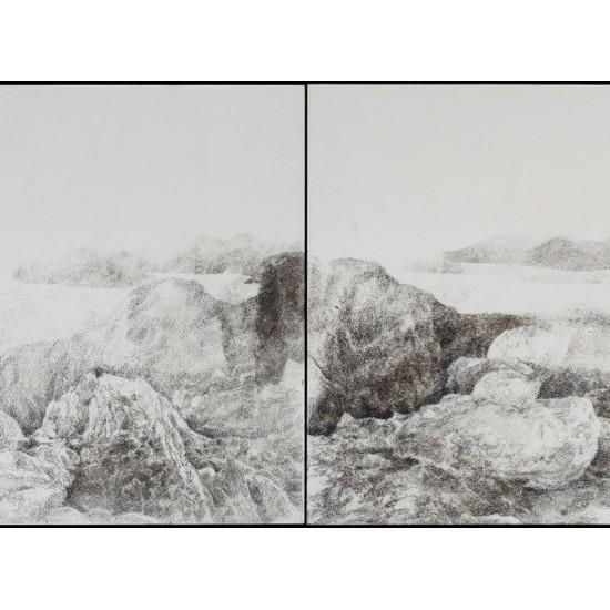 Assembled landscape 1