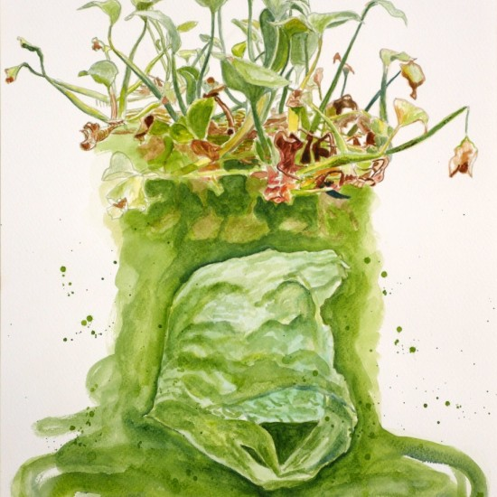 Floating plant and plastic bag