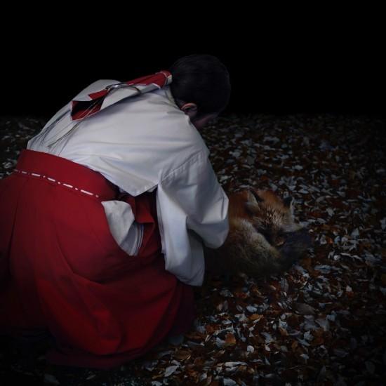 kitsune bi [foxfires] II 2018
