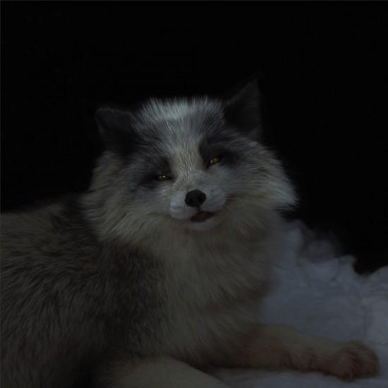 kitsune bi [foxfires] III 2018