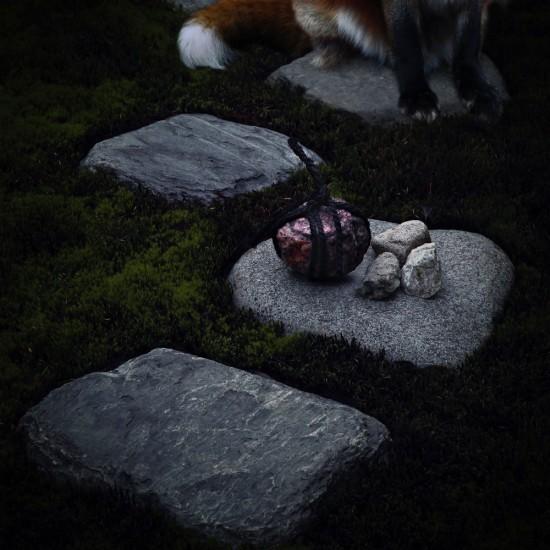 kitsune bi [foxfires] VIII 2018