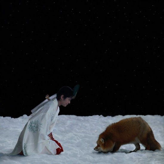 kitsune bi [foxfires] XIII 2018