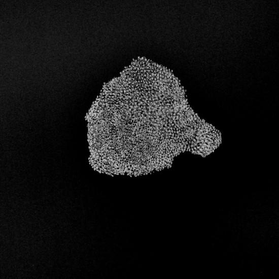 Shape of Breath 3