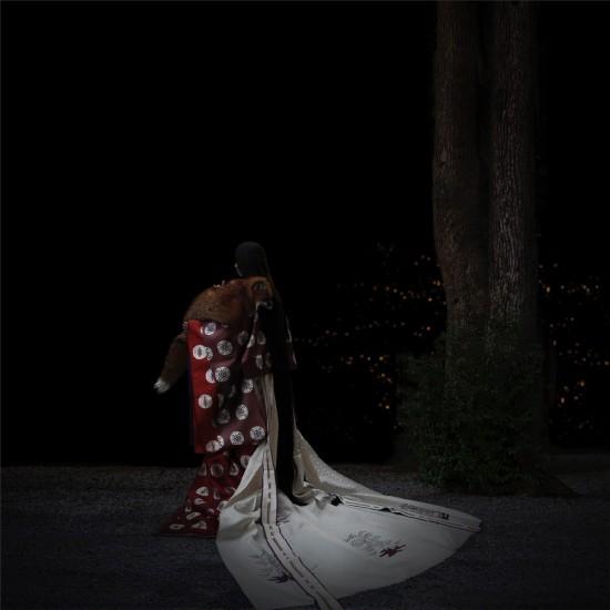 kitsune bi [foxfires] XV 2018