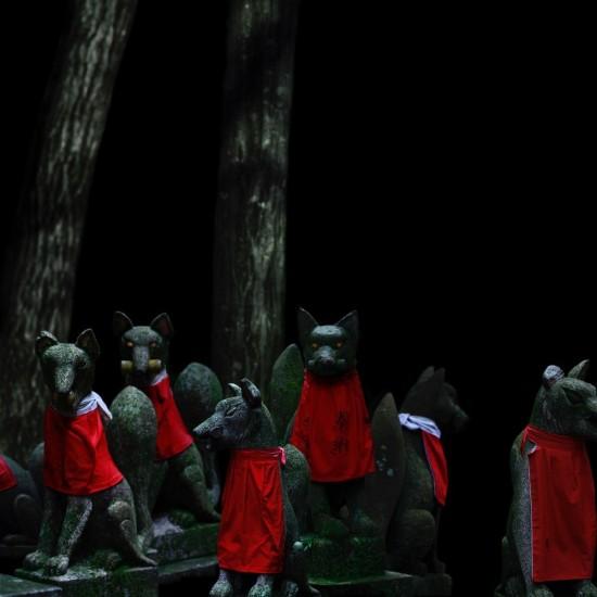 kitsune bi [foxfires] XVII 2019