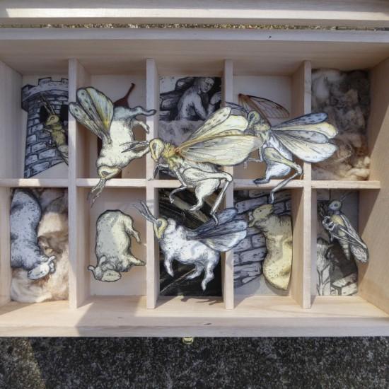 Denise Scholz Wulfing - Strange Specimens