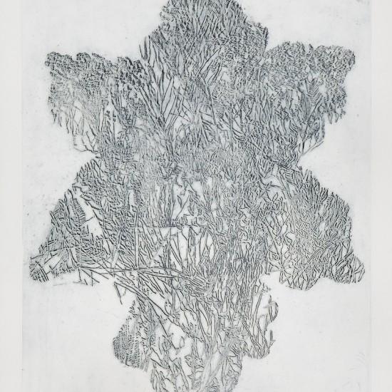 Mirabel FitzGerald - Arborescent