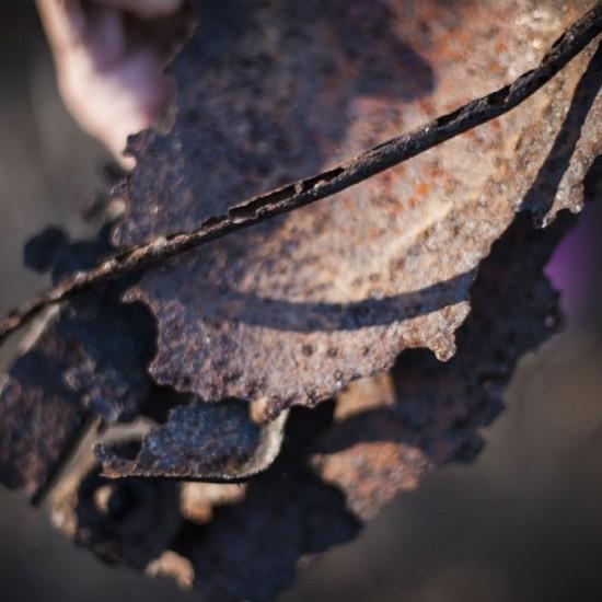 Scrap metal from the car wreck