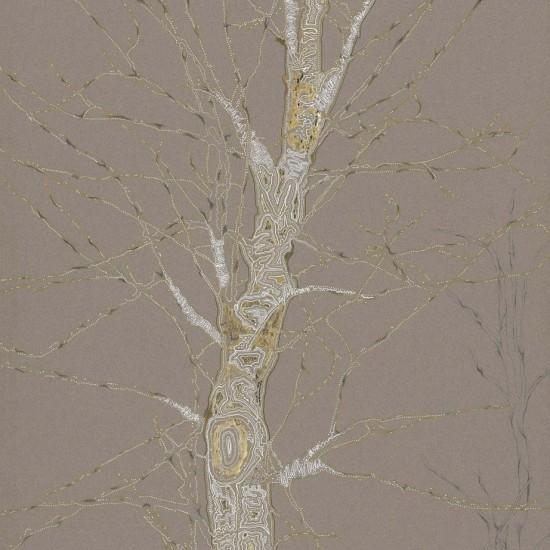 Birch Tree Study III