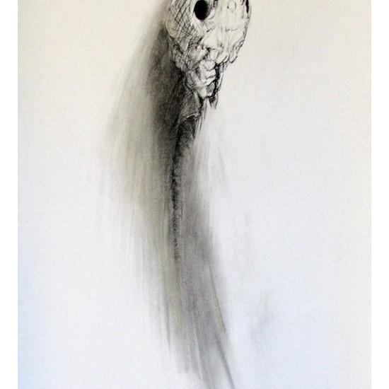 Mummified Fish 1