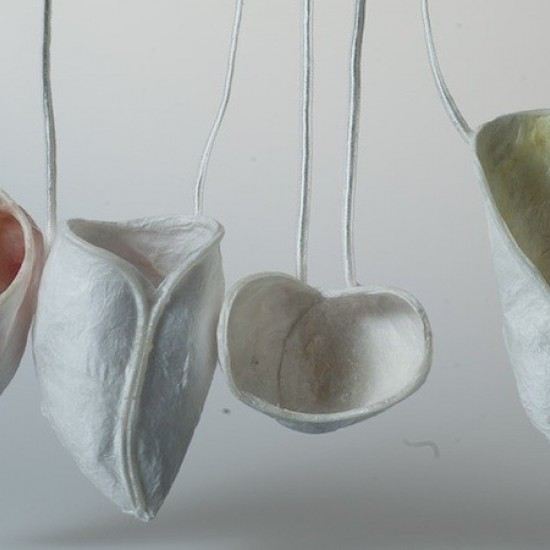 Ellana Kariatlis - Orchis