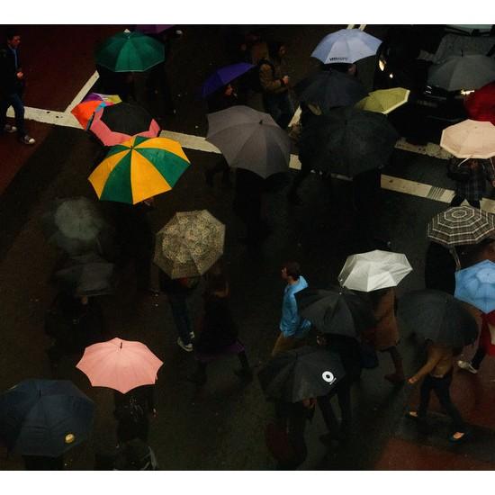 Umbrella Crossing - George Street, Sydney, NSW 2012