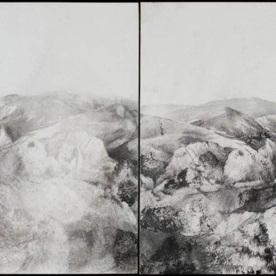 Assembled Landscape