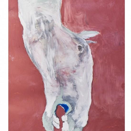 Pink Horse Head
